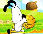 Basket Hond