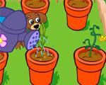 Dora's Magische Tuin