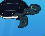 Tuga de Schildpad